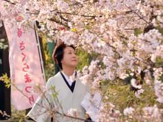 Giappone: uno dei simboli del Sol levante è proprio il fiore di ciliegio sakura. Fra fine marzo e metà maggio, i giapponesi si ritrovano per fare Hanami. Un'usanza sentitissima che coinvolge tutti e che diventa occasione per passeggiate e picnic all'ombra di una delicata nuvola profumata