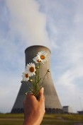 Cooling Tower and Daisies