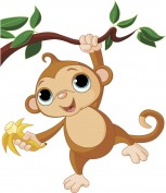 scimmietta
