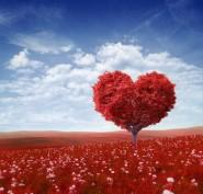 creatura dell'amore